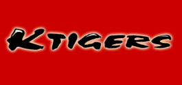 Martial-Arts-Business-Demonstration-Teams-Korean-Tigers