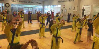martial arts world