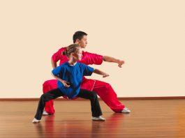 Kung Fu Curriculum