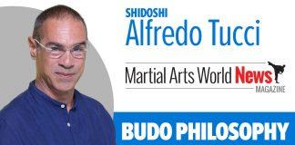 Alfredo Tucci column
