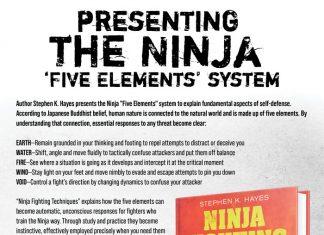 Stephen Hayes Ninja Book